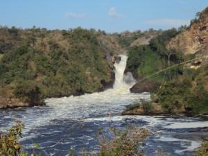 The Great Murchison Falls