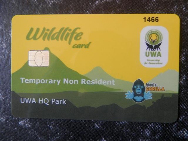 A Plastic Gorilla Permit Card.