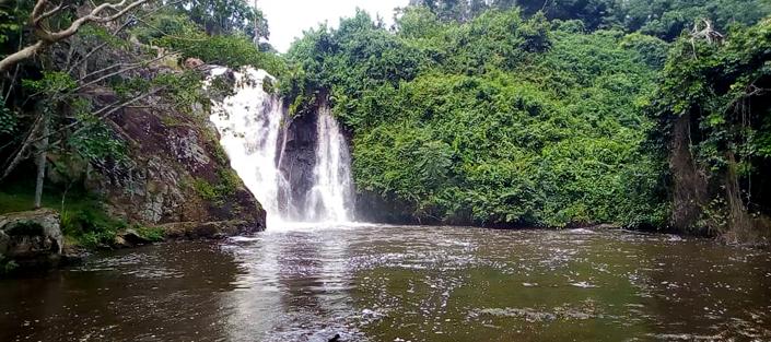 1 Day Jinja tour - City tour from Kampala - Mabira Forest, Source of the Nile and Ssezibwa Falls