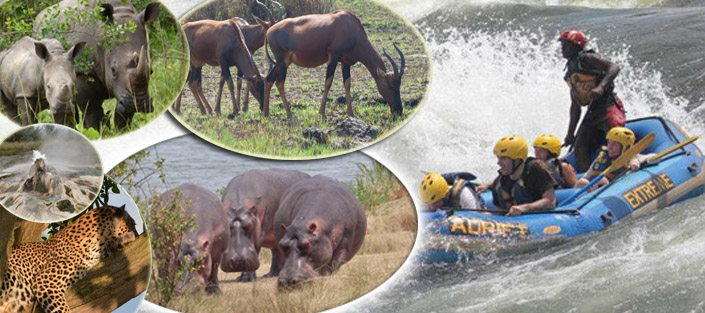 16 Days Uganda adventure safari with cultural visits, sipi falls hike, source of the nile, pygmies community visit, gorillas tracking, chimpanzee trekking