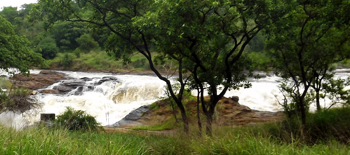 2 Days Murchison Falls safari, wildlife viewing tour, hiking top of the falls - Murchison Falls National Park