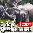 2 days queen elizabeth safari