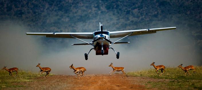 3 Days Masai Mara flying safari - wildlife adventure tour