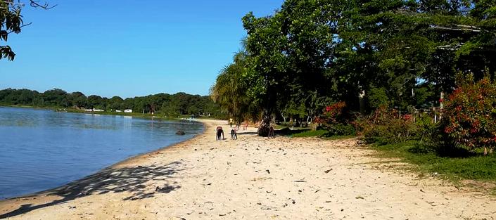 3 Days Ssese Islands Tour - Brovad Sands Beach