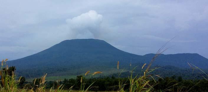 4 Days Nyiragongo Volcanoe hike - Congo & Gorilla trek in the Volcanoes - Rwanda