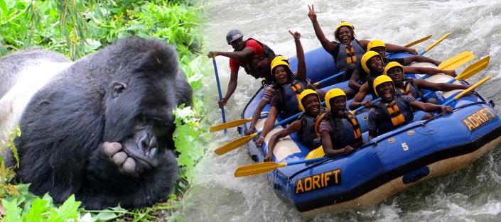 6 Days Uganda safari with gorilla trekking and rafting on River Nile