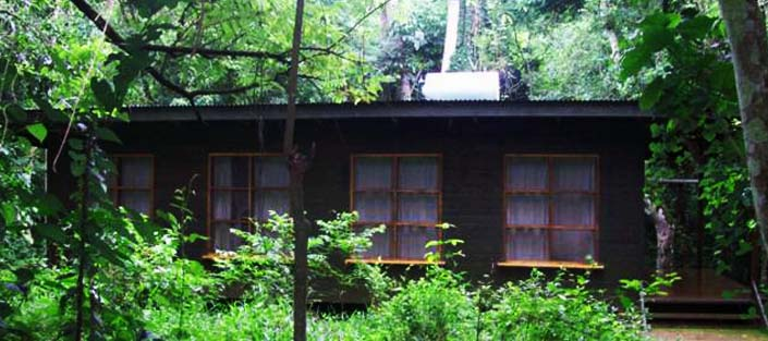 Budongo Eco Lodge - Murchison falls National Park