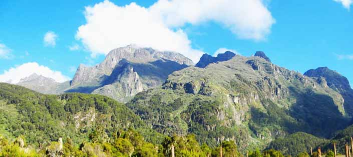 Mountain Rwenzori for Hiking