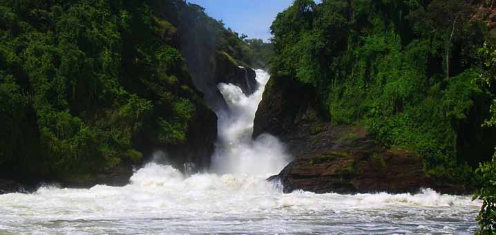 The Murchison falls - Murchison falls National Park