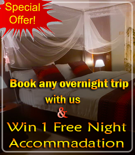 Book any overnight trip with us, and Win 1 Free Night Accommodation - African Adventure Travellers