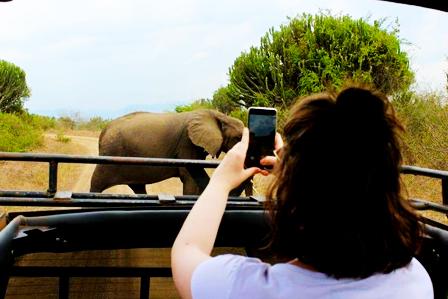 2 Days Murchison falls safari - Murchison Falls National Park